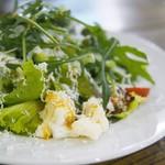 ピッツァリーヴァ - グリーンサラダと熟成リコッタチーズ