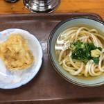 60969935 - ひやかけ+高野豆腐の天ぷら