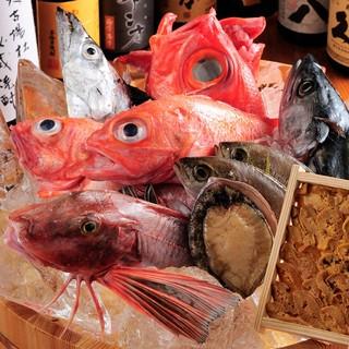 鮮魚な旬の魚