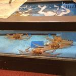 61014701 - 生け簀に泳ぐ蟹