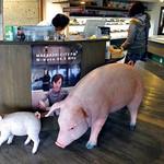 とんとん農場レストラン - 建物内にも豚のフィギュアが多数飾られています