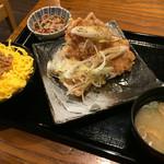 バードマン - 唐揚げセット(ねぎ塩、そぼろ)
