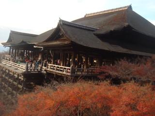 本家西尾八ッ橋 清水店 - 清水寺の舞台と紅葉