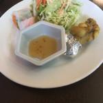 サンティプール - セットにつく生春巻き、サラダ、タンドール