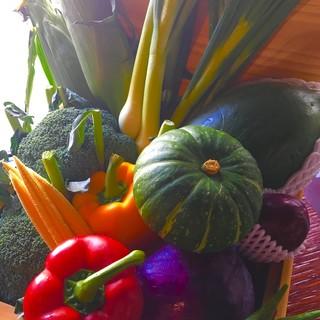 厳選した新鮮野菜を使った、創作和食