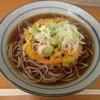 一ノ関在来ホームそば店 - 料理写真:天ぷらそば 400円 (2016.12)