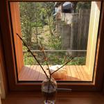 囀 - 窓の外は冬枯れのお庭