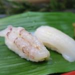 日乃出寿し - 料理写真:ヤリイカとガス海老(がさ海老)