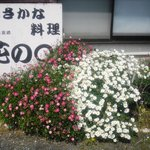 花のえん - 1月から4月は、花の盛んな季節です。