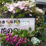 花のえん - 国道を上がって頂くと、この看板が目印です。