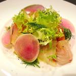 レガーロ - 料理写真:石鯛のカルパッチョ