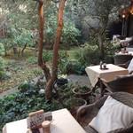 サザ コーヒー - お庭の手前からの眺め