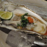 魚料理 吉成 - 生カキ