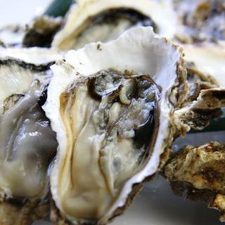 北海道厚岸産ブランド牡蠣