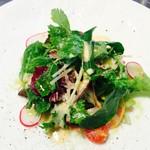 miya - 朝採れ野菜のみずみずしいヨーロピアングリーンサラダ ペコリーノロマーノ