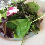 61773675 - 前菜とサラダの盛り合わせ