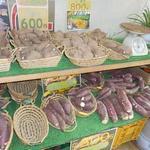 ラ・イモンチ - 店内では焼く前のイモも販売されている