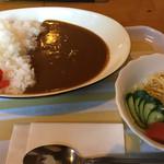 やまびこ - 料理写真:2017年1月27日  カレーライス