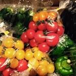 代々木バル - 小林ファームの産直野菜