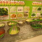 すたみな太郎 - サラダコーナー