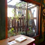 ハティフナット - 窓の外には鉢植えが並びます