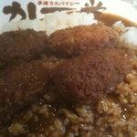 6193812 - 2011かきカレー