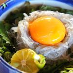 新島水産 - 生シラス丼
