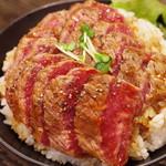 レッド ロック - ステーキ丼(斜め上から)