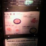 焼肉 燕 - 入口の看板です。