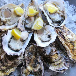 大好評につき、11月も石巻産生牡蠣が10個980円!