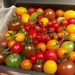 ミクソロジーエクスペリエンス - トマトは高知県岡崎農園さんから直送