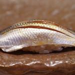 鮨 久いち - 料理写真:小鰭