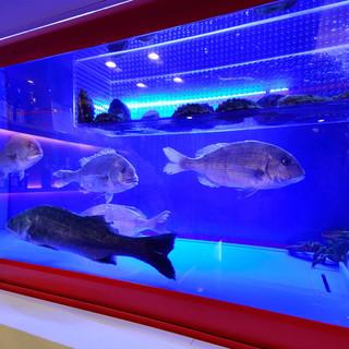 店内の大型水槽より活きの良い魚介類をお届け