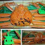 ニューきらく家 - ご参考。スーバーマーケットで購入した柴山漁港松葉蟹