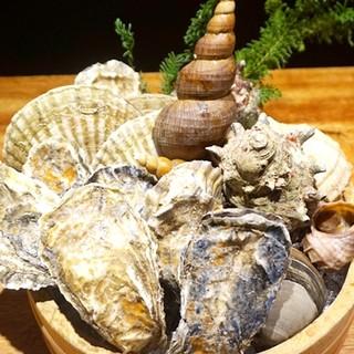 年間100種類以上の魚介と、厳選肉を使用