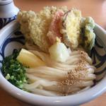 手打ち讃岐うどん 雲海 - 料理写真:野菜天ぶっかけ