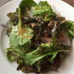 62419101 - ベビーリーフのサラダ。にんにくの効いたドレッシングが美味しい!