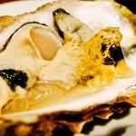VIVACE - 料理写真:生牡蠣(白ワインのジュレ)