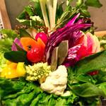 どろまみれ - 野菜15種盛り