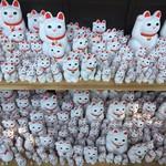 瑞雪 - 豪徳寺の招き猫