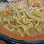 ラーメン福たけ - 麺