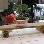 62761537 - 銭湯をイメージしたタイル貼りの内装に盆栽やスケートボードが飾られた独特にラフな店2