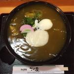 62830916 - ミックスカレー ¥1130 「ライス とろろ 温玉入り」                         豚肉 お揚げさん かまぼこ 玉ねぎ ねぎも入ってます