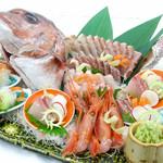 日本料理 橘 - おめでたい席に鯛姿造り