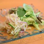 セイロン・イン - チキンカレー+野菜カレーのセット+ナン@税込950円 のサラダ
