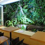 石垣島あのん - 中庭です