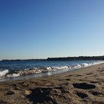 廻転寿司 海鮮 - 三浦海岸