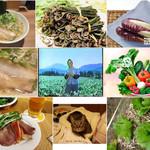 """彩色ラーメンきんせい - """"野菜をたんととらにゃああかん""""で画像検索した結果。中央がその元ネタのCMの画像。正確には語尾が方言(だちかんで)になっている。"""