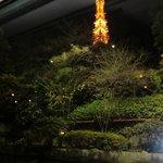 6309001 - 店内から見る東京タワーの夜景