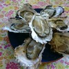 中山牡蠣養殖所 - 料理写真:生牡蠣
